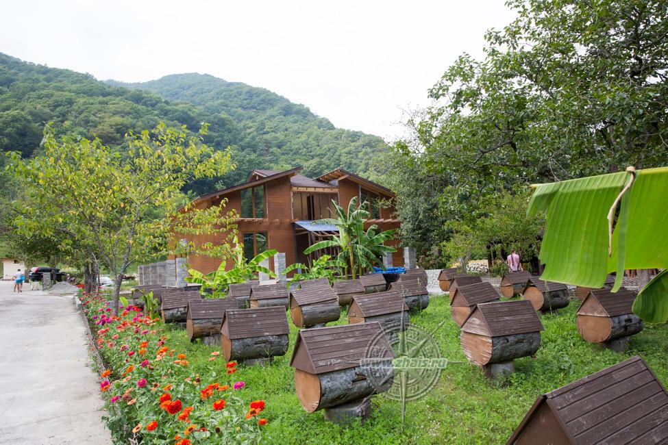 медовый двор абхазия официальный сайт